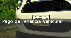 ovh_tenencia_vehicular